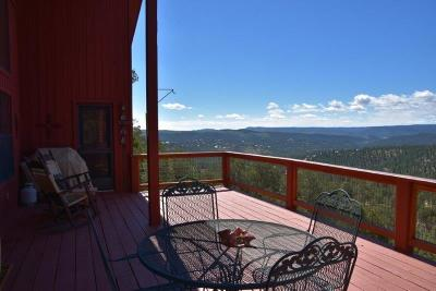Single Family Home For Sale: 236 Telluride Trail