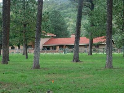 Single Family Home For Sale: 127 Eagle Creek Canyon Rd