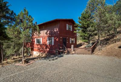 Single Family Home For Sale: 204 Maple Dr #1