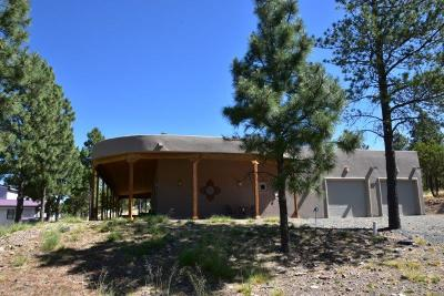Single Family Home For Sale: 407 Scenic Dr