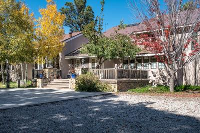 Single Family Home For Sale: 63 Eagle Creek Canyon Rd