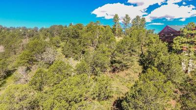 Ruidoso NM Residential Lots & Land For Sale: $19,000