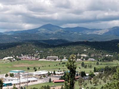 Ruidoso NM Single Family Home For Sale: $315,000