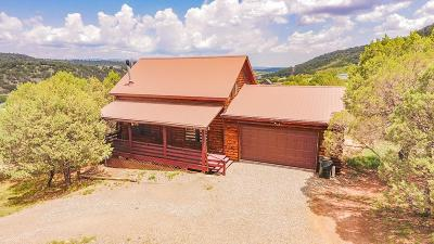Alto NM Single Family Home For Sale: $225,000