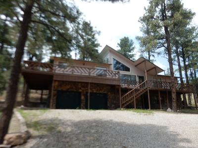 Ruidoso NM Single Family Home For Sale: $325,000