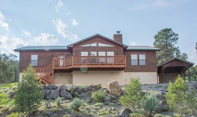 Ruidoso NM Single Family Home For Sale: $319,900