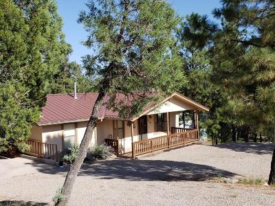 Ruidoso NM Single Family Home For Sale: $234,000