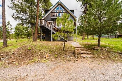 Ruidoso NM Single Family Home For Sale: $469,900