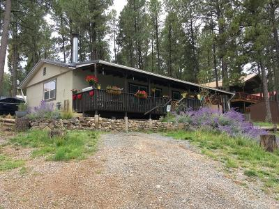 Ruidoso NM Single Family Home For Sale: $198,500
