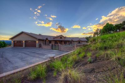 Ruidoso NM Single Family Home For Sale: $1,395,000