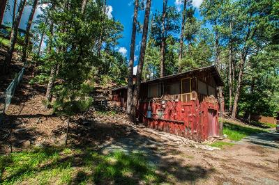 Ruidoso NM Single Family Home For Sale: $79,000