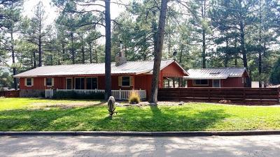 Ruidoso NM Single Family Home For Sale: $195,000