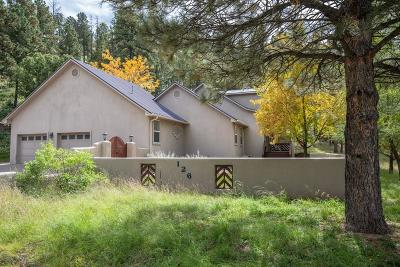 Single Family Home For Sale: 126 Alto Pines Trl
