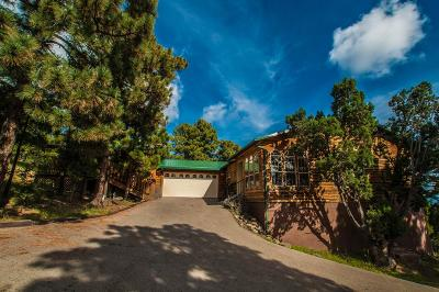 Single Family Home For Sale: 126 Winter Park