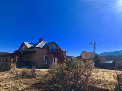 Single Family Home For Sale: 974 White Oaks Rd