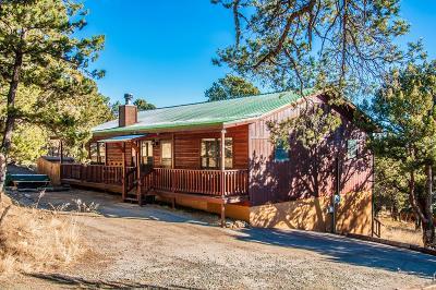 Single Family Home For Sale: 141 Big Sky #2