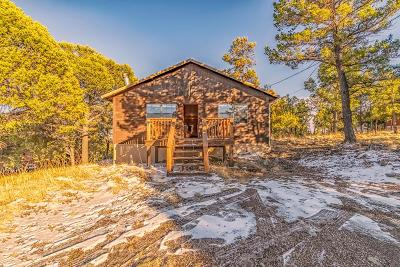 Single Family Home For Sale: 107 Pine Shadow Trl
