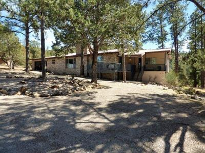 Single Family Home For Sale: 110 Rim Rd