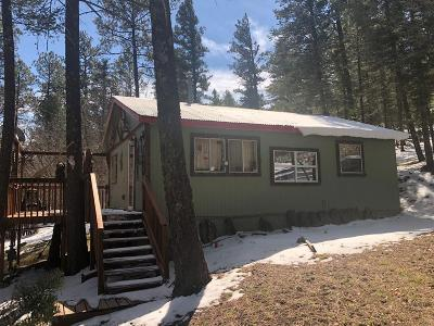 Single Family Home For Sale: 114 Denver City Dr