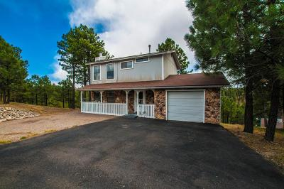 Single Family Home For Sale: 300 Sunny Slope Dr