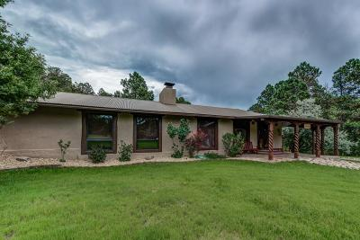 Ruidoso Single Family Home For Sale: 221 Eagle Creek Canyon Rd