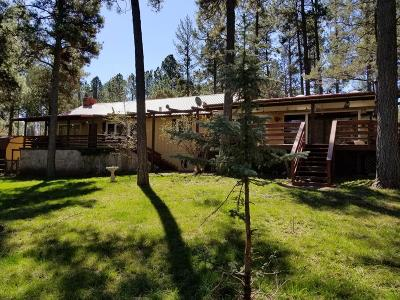Ruidoso NM Single Family Home For Sale: $289,000