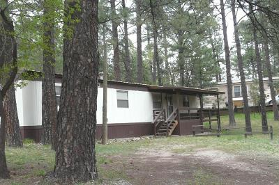 Ruidoso NM Manufactured Home For Sale: $79,500