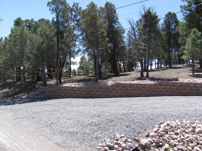Ruidoso NM Residential Lots & Land For Sale: $96,500