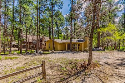 Ruidoso NM Single Family Home For Sale: $675,000