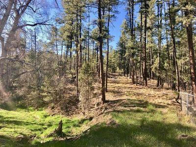 Ruidoso NM Residential Lots & Land For Sale: $69,000