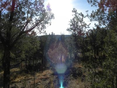 Ruidoso NM Residential Lots & Land For Sale: $29,900