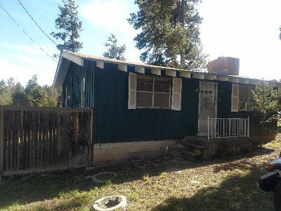 Ruidoso NM Single Family Home For Sale: $119,900