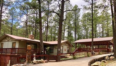 Ruidoso NM Single Family Home For Sale: $369,500