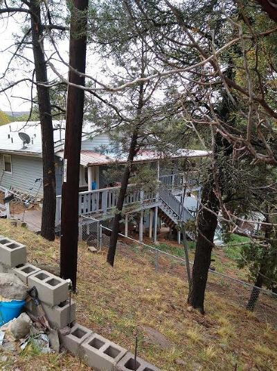 Ruidoso NM Single Family Home For Sale: $95,000