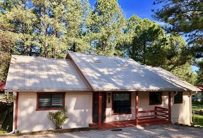 Ruidoso NM Single Family Home For Sale: $245,000