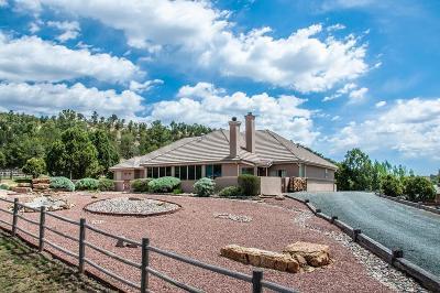 Ruidoso Single Family Home For Sale: 419 Eagle Ridge Road