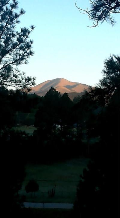 Ruidoso NM Residential Lots & Land For Sale: $250,000