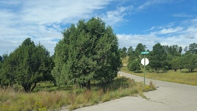 Ruidoso NM Residential Lots & Land For Sale: $34,000