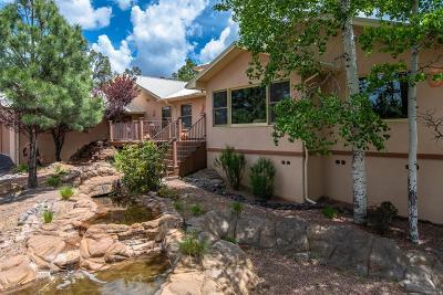 Ruidoso NM Single Family Home For Sale: $699,000