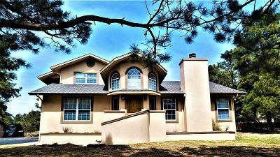 Single Family Home For Sale: 143 Eagle Ridge Road #1