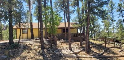 Ruidoso NM Single Family Home For Sale: $206,000