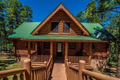 Single Family Home For Sale: 115 Mogul Rd