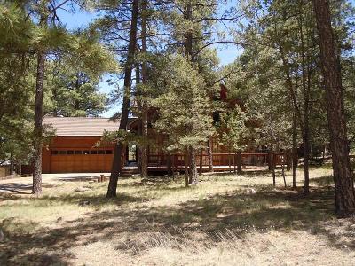 Single Family Home For Sale: 108 Bull Elk Ct #1
