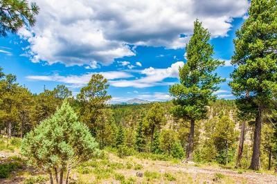 Ruidoso NM Residential Lots & Land For Sale: $48,000