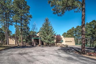 Single Family Home For Sale: 105 Bull Elk Ct #1