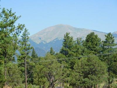 Ruidoso NM Residential Lots & Land For Sale: $57,000