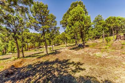 Ruidoso NM Residential Lots & Land For Sale: $25,000