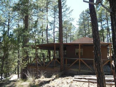 Ruidoso NM Single Family Home For Sale: $35,000
