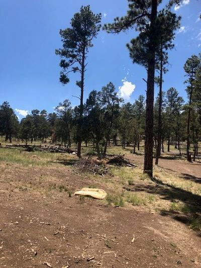 Ruidoso NM Residential Lots & Land For Sale: $109,000