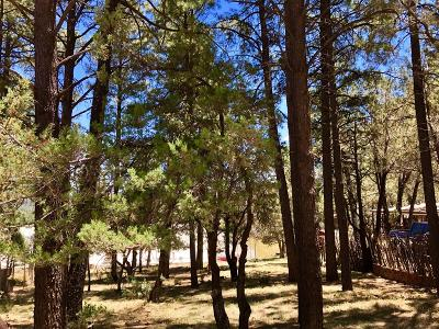Ruidoso NM Residential Lots & Land For Sale: $12,500